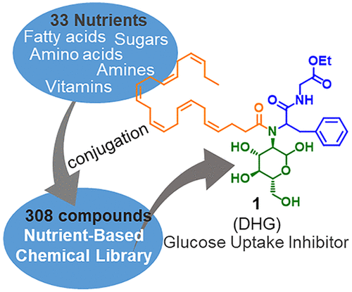 Nutrient-Based Chemical Library as a Source of Energy Metabolism Modulators.png